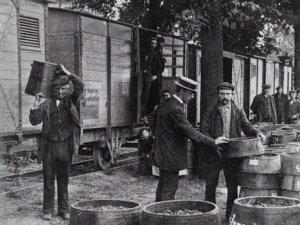 C. de Bie (met strohoed) ziet toe op het laden van frambozen, 1910.